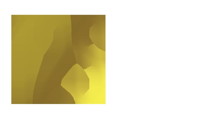 Focus Action Planner